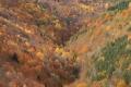 2011-11-05-pyrenees-040