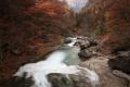 2011-11-02-pyrenees-022