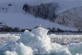 20150705 Svalbard 20-13-15 66