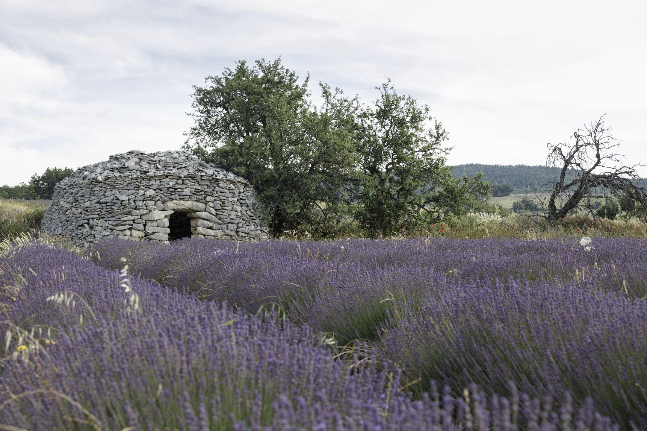 20210628-Provence-09-33-03-012
